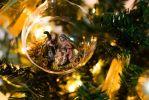 Santo Natale 2020 Auguri alle Famiglie