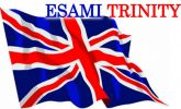 Feedback Esami Trinity 5 giugno 2015